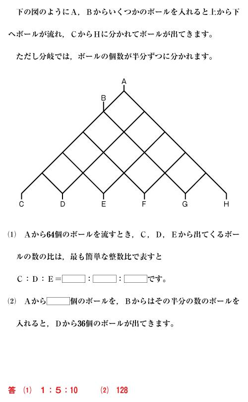 26-shiba-01-09.jpg