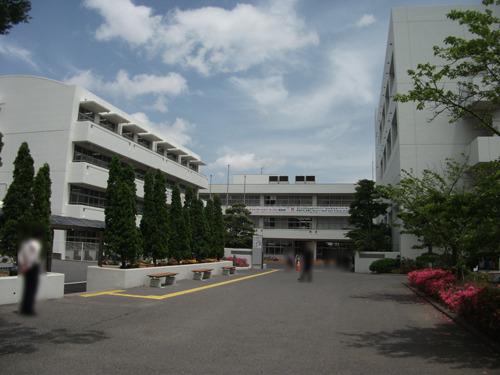 shibakashi0180525-02.jpg