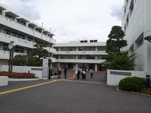 shibakashi20190531-02.jpg